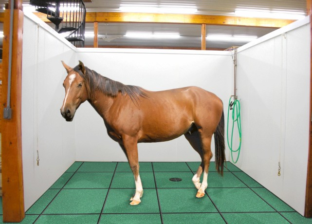 Horse rubber paver stall mats
